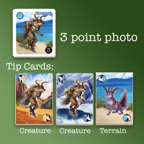 A 3 point photo card and 3 tips cards: 2 matching the creature and one matching the terrain